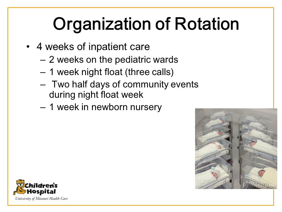Organization of Rotation
