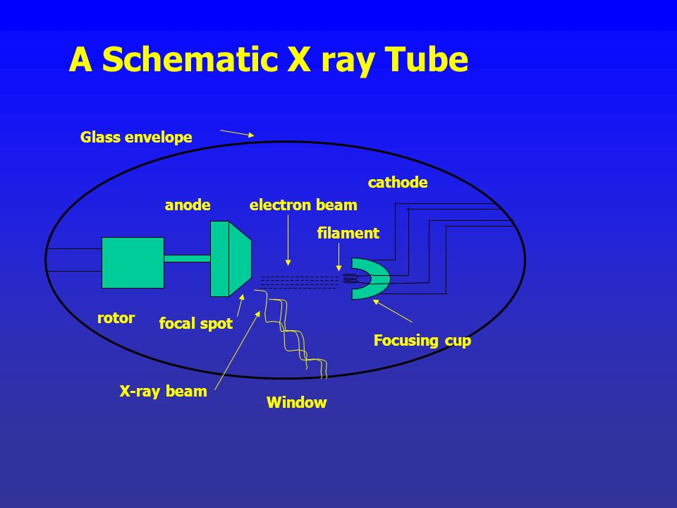 A Schematic X ray Tube Glass envelope cathode anode electron beam
