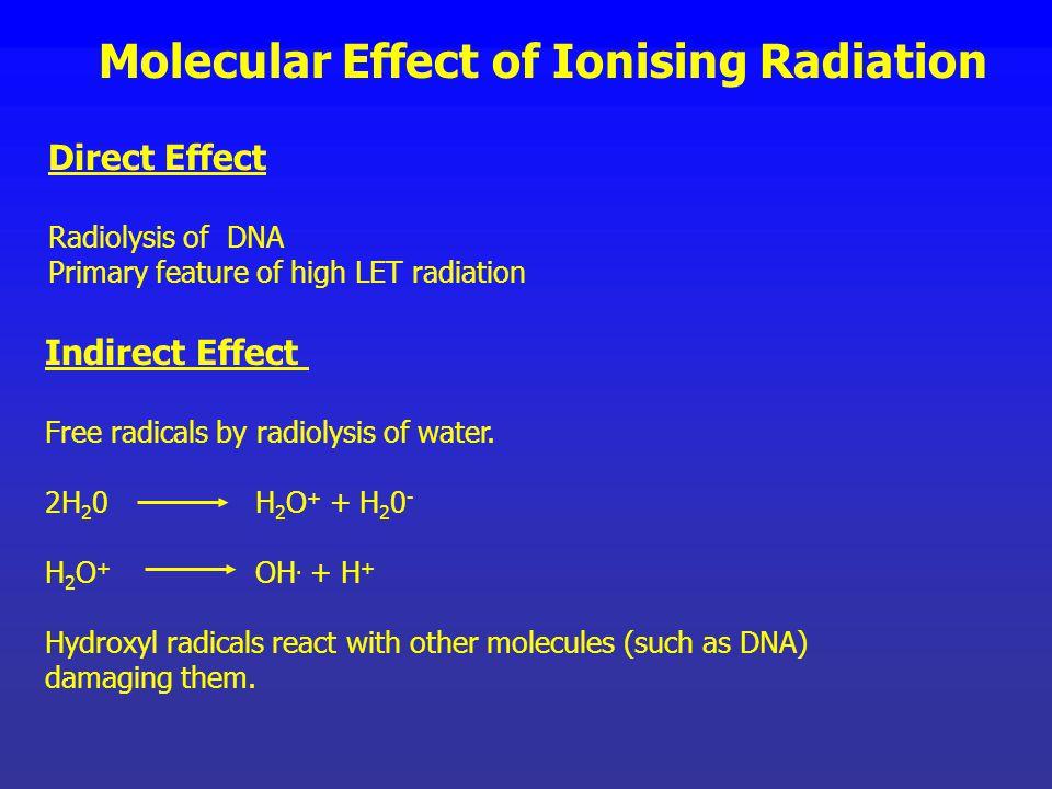 Molecular Effect of Ionising Radiation