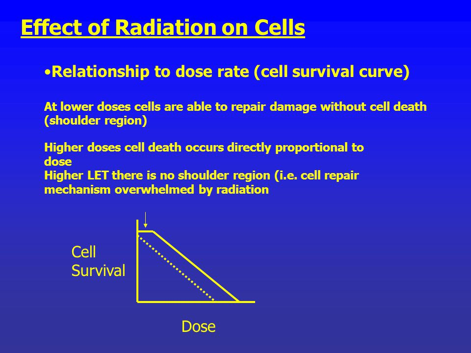 Effect of Radiation on Cells