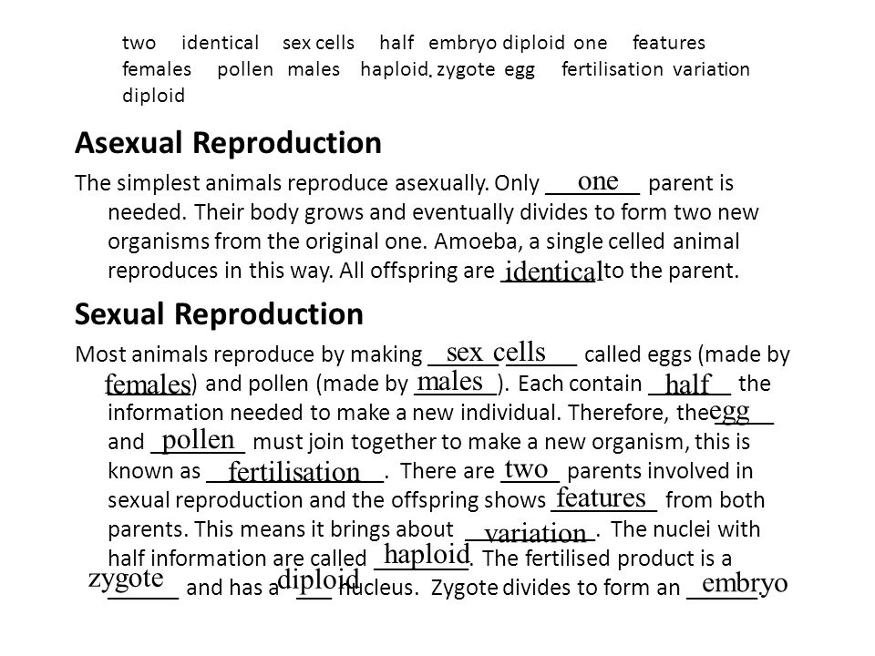 Asexual Reproduction Sexual Reproduction one identical sex cells males