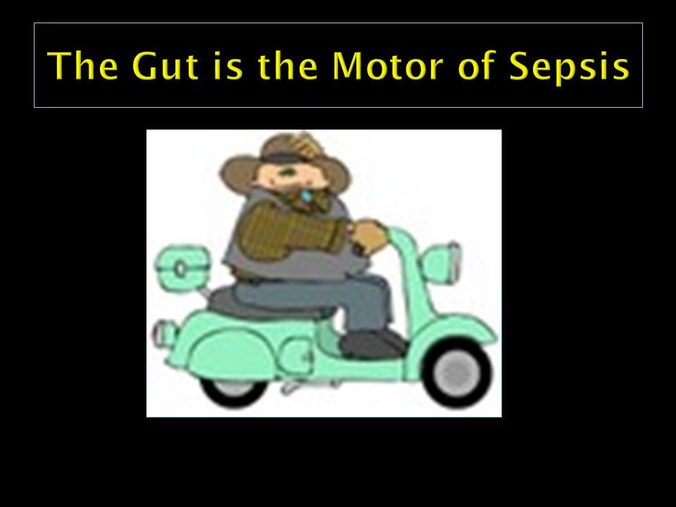 The Gut is the Motor of Sepsis