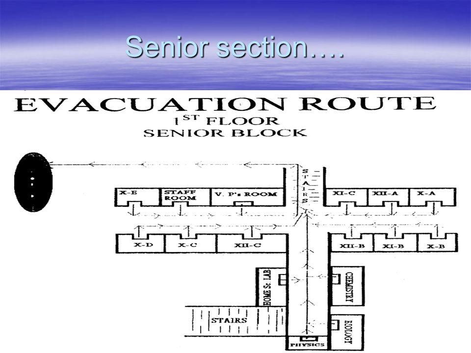 Senior section….