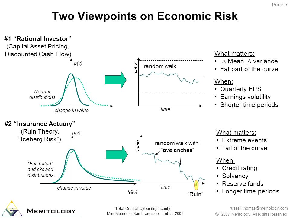 Two Viewpoints on Economic Risk