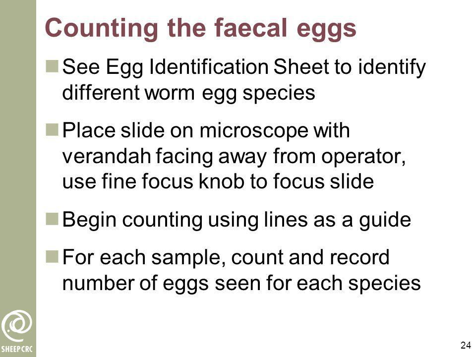 Counting the faecal eggs