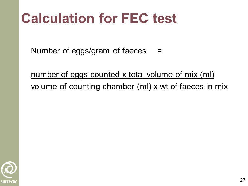 Calculation for FEC test