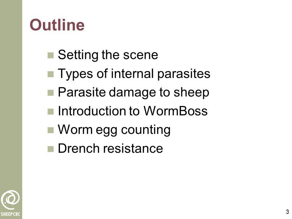 Outline Setting the scene Types of internal parasites