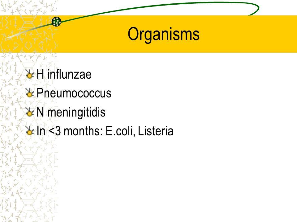 Organisms H influnzae Pneumococcus N meningitidis