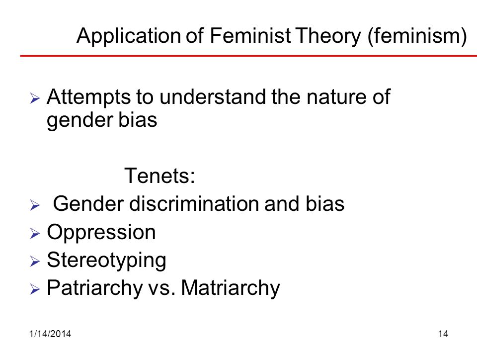 Application of Feminist Theory (feminism)