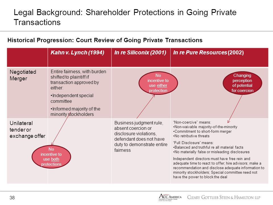 Legal Background: Shareholder Protections in Going Private Transactions