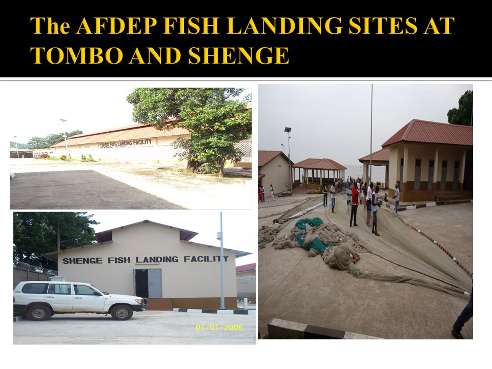The AFDEP FISH LANDING SITES AT TOMBO AND SHENGE