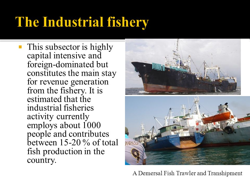 The Industrial fishery