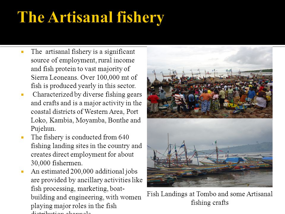Fish Landings at Tombo and some Artisanal fishing crafts
