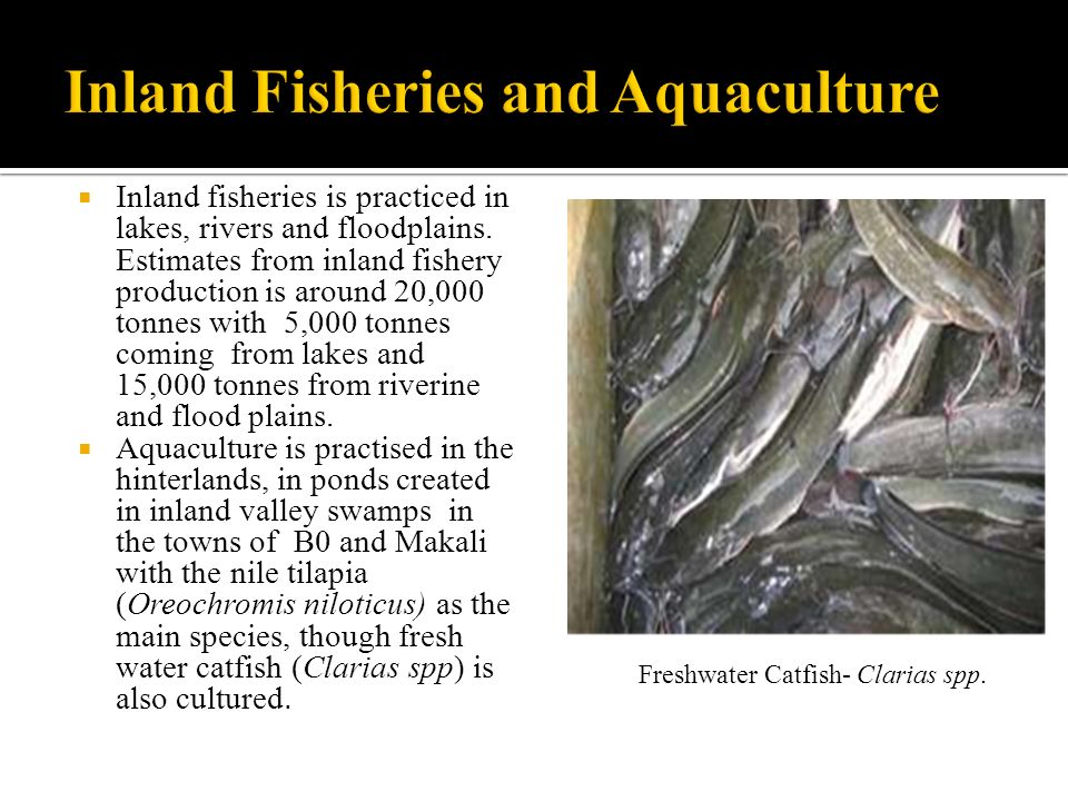 Inland Fisheries and Aquaculture