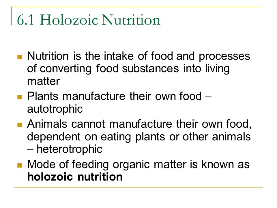 6.1 Holozoic NutritionNutrition is the intake of food and processes of converting food substances into living matter.