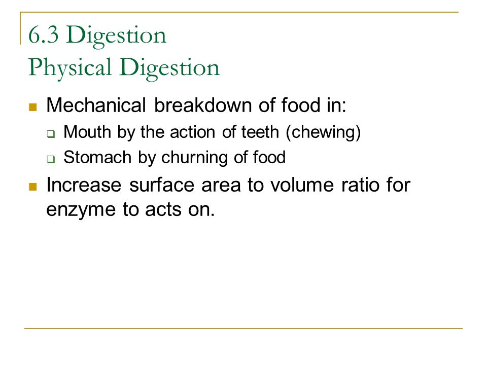 6.3 Digestion Physical Digestion