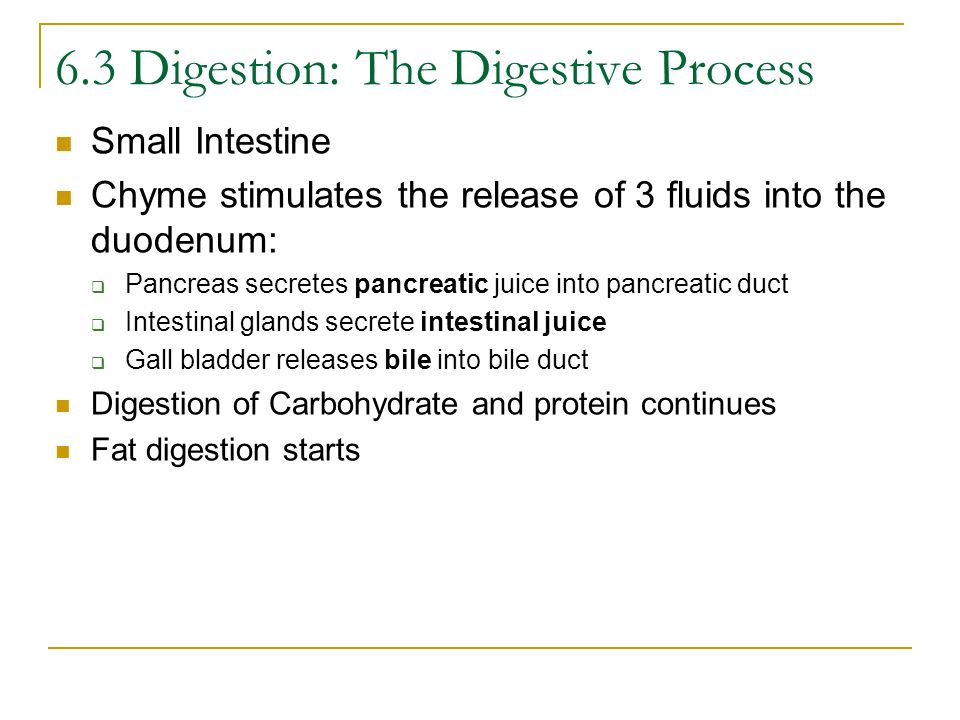 6.3 Digestion: The Digestive Process