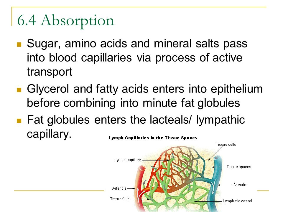 6.4 Absorption Sugar, amino acids and mineral salts pass into blood capillaries via process of active transport.