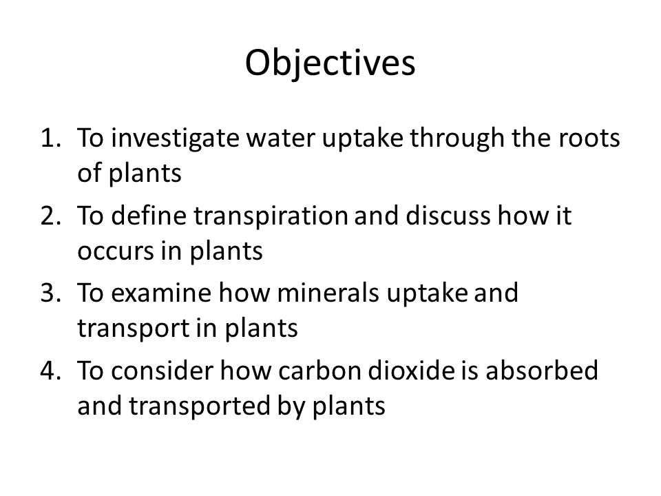 Objectives To investigate water uptake through the roots of plants