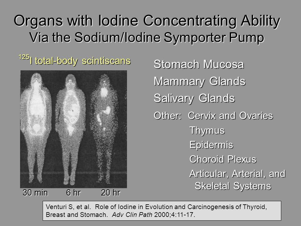 Organs with Iodine Concentrating Ability Via the Sodium/Iodine Symporter Pump
