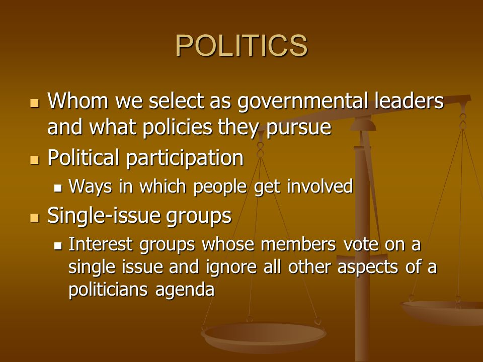 POLITICS Whom we select as governmental leaders and what policies they pursue. Political participation.