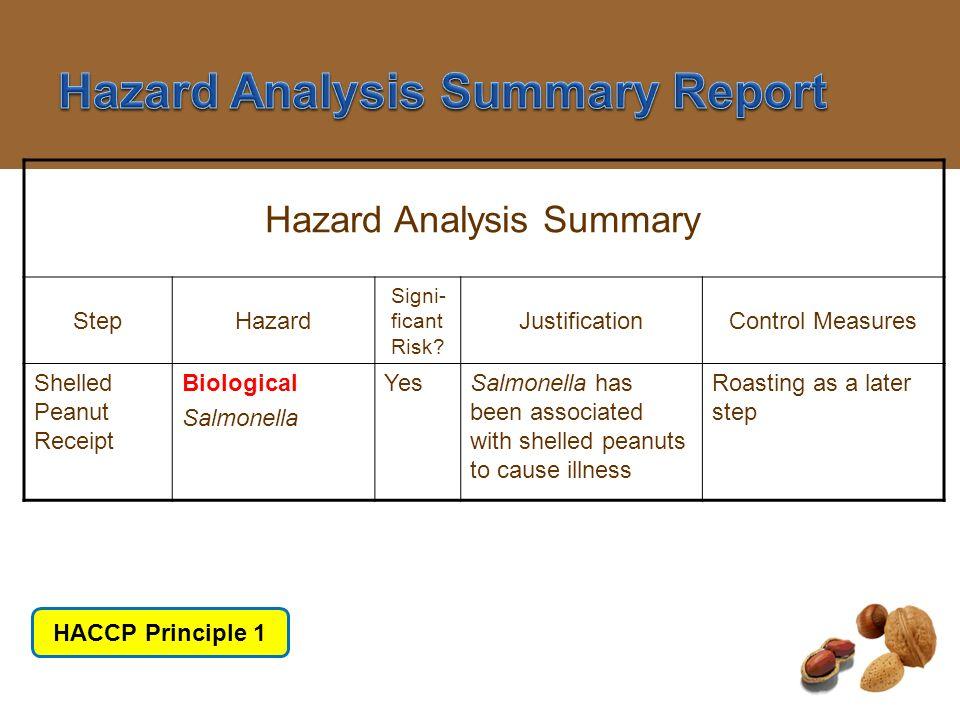 Hazard Analysis Summary Report