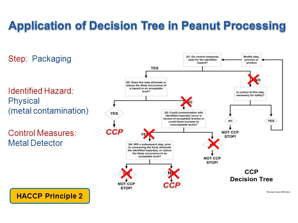 Application of Decision Tree in Peanut Processing