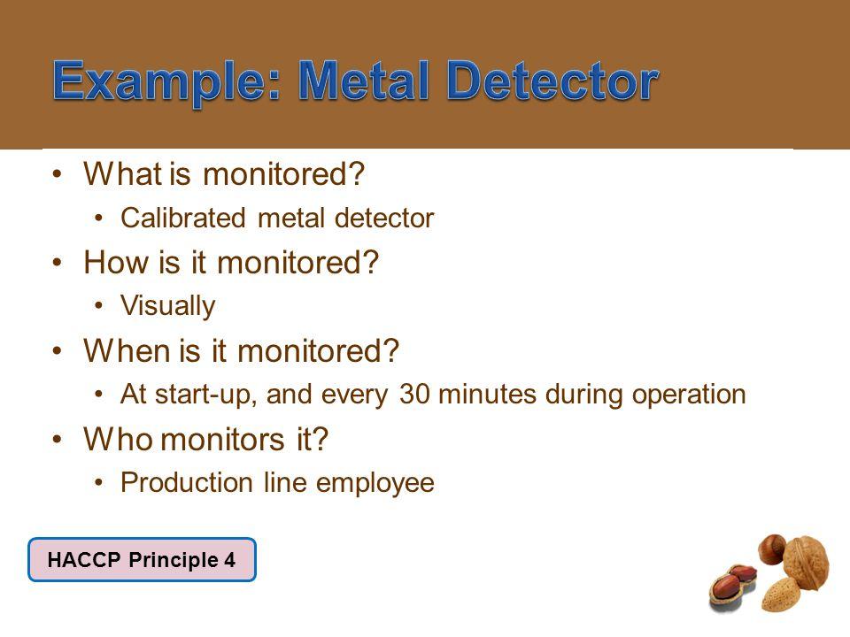 Example: Metal Detector