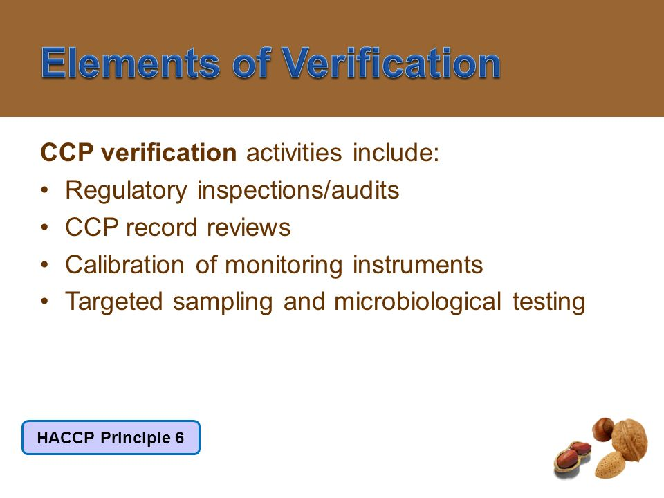 Elements of Verification