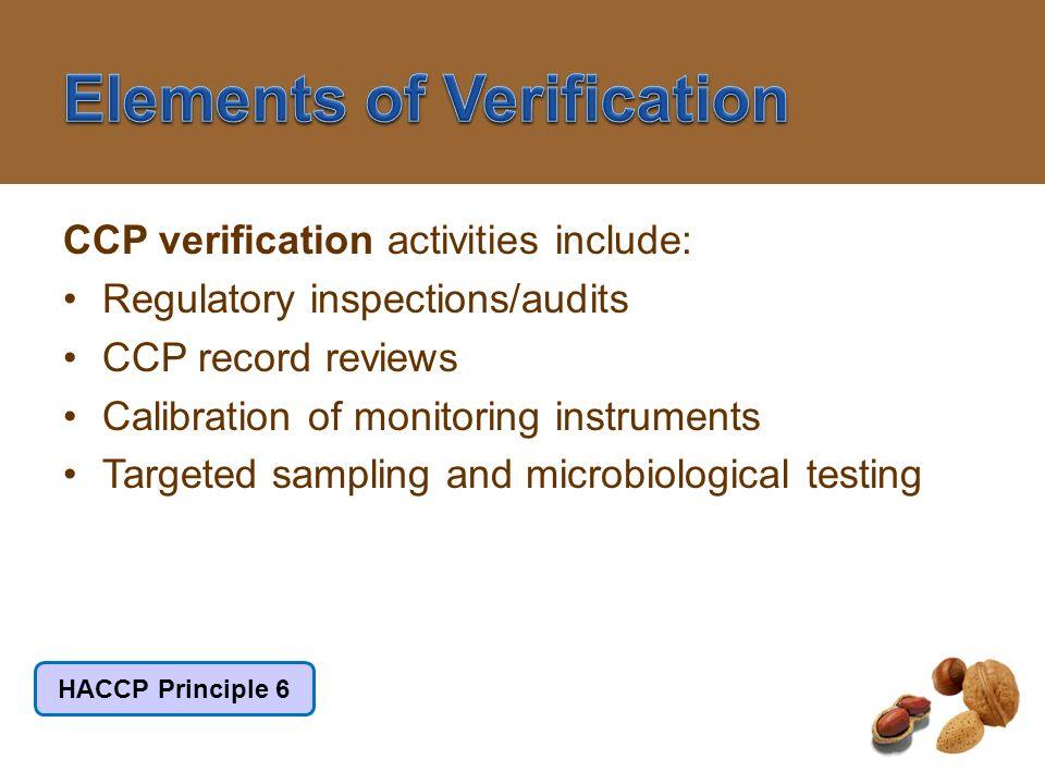 Elements of Verification