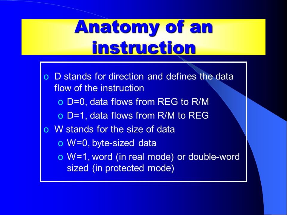 Anatomy of an instruction