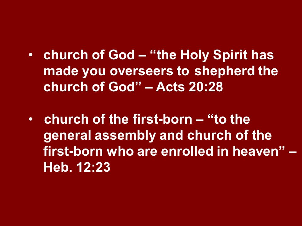 church of God – the Holy Spirit has. made you overseers to