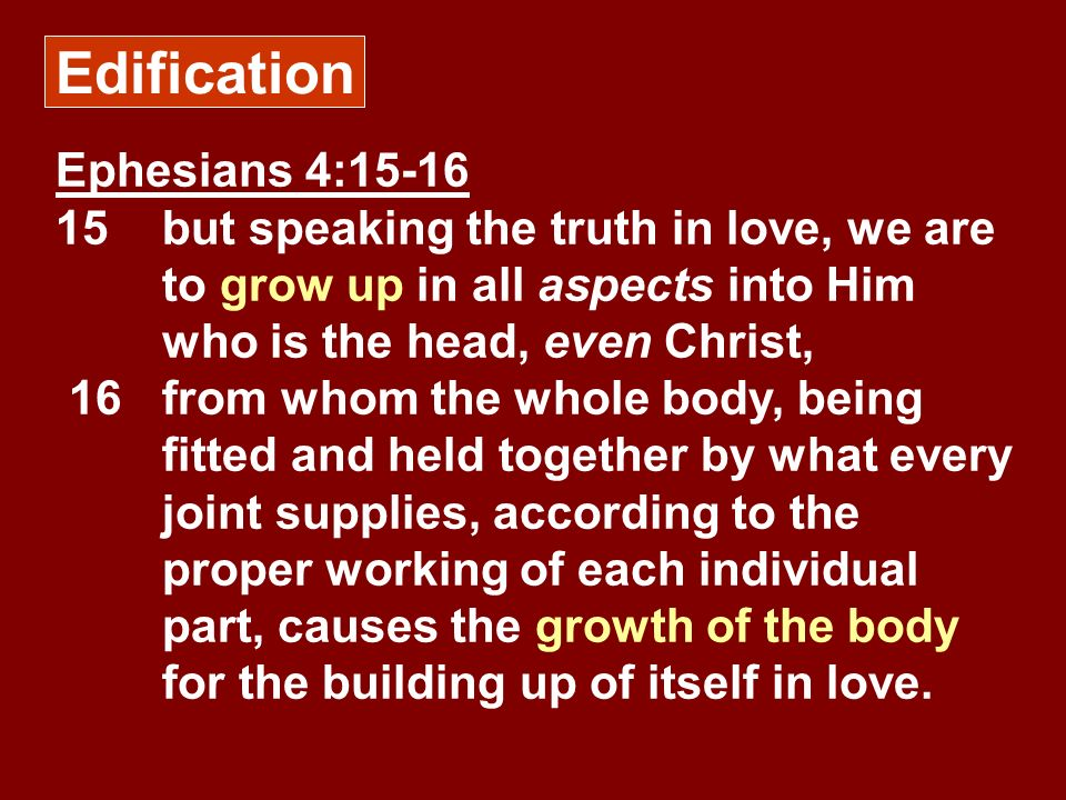Edification Ephesians 4:15-16 15 but speaking the truth in love, we are to grow up in all aspects into Him who is the head, even Christ,
