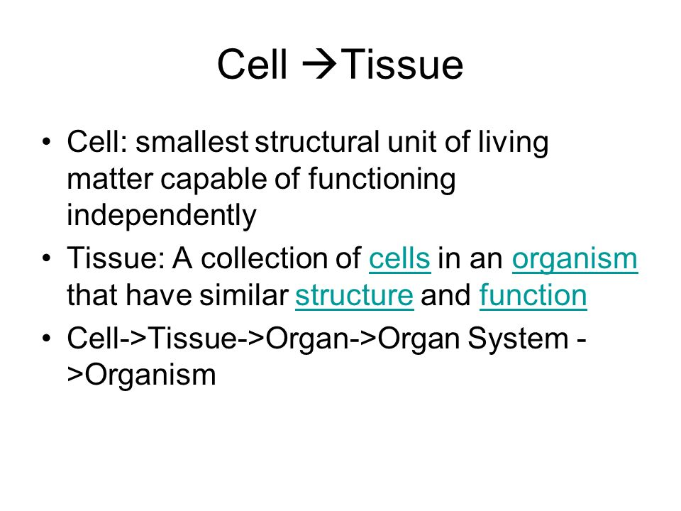 Cell Tissue Cell: smallest structural unit of living matter capable of functioning independently.