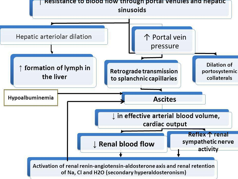 ↑ Resistance to blood flow through portal venules and hepatic sinusoids