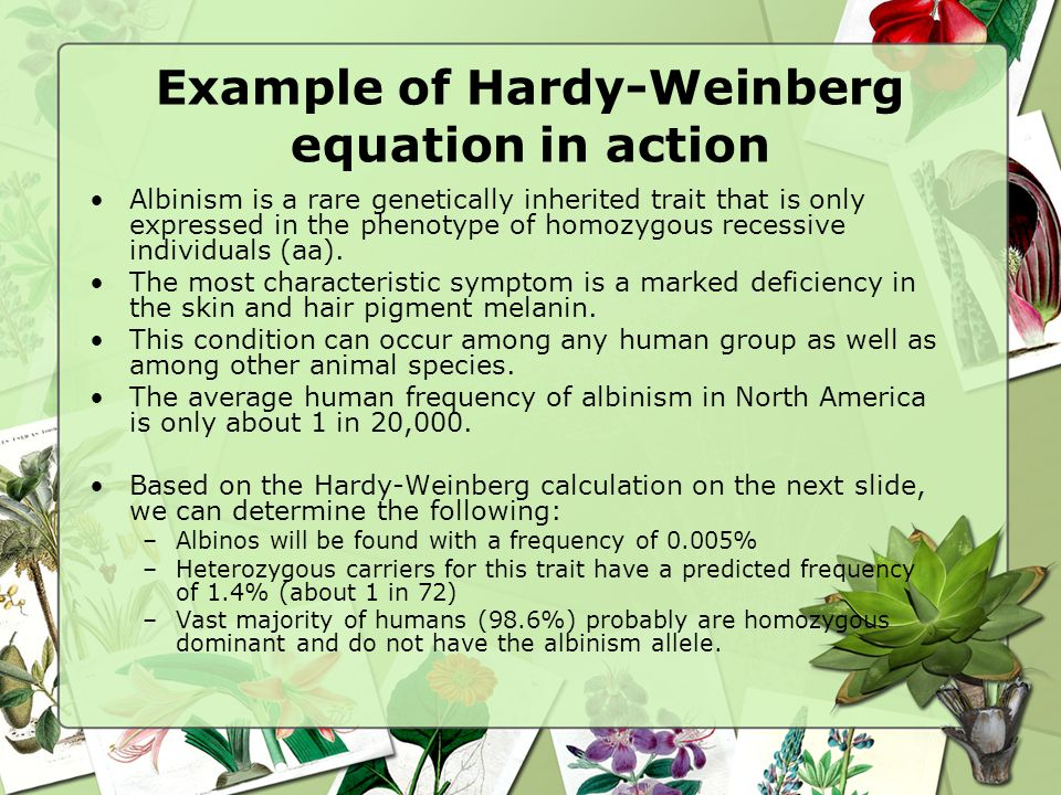 Example of Hardy-Weinberg equation in action