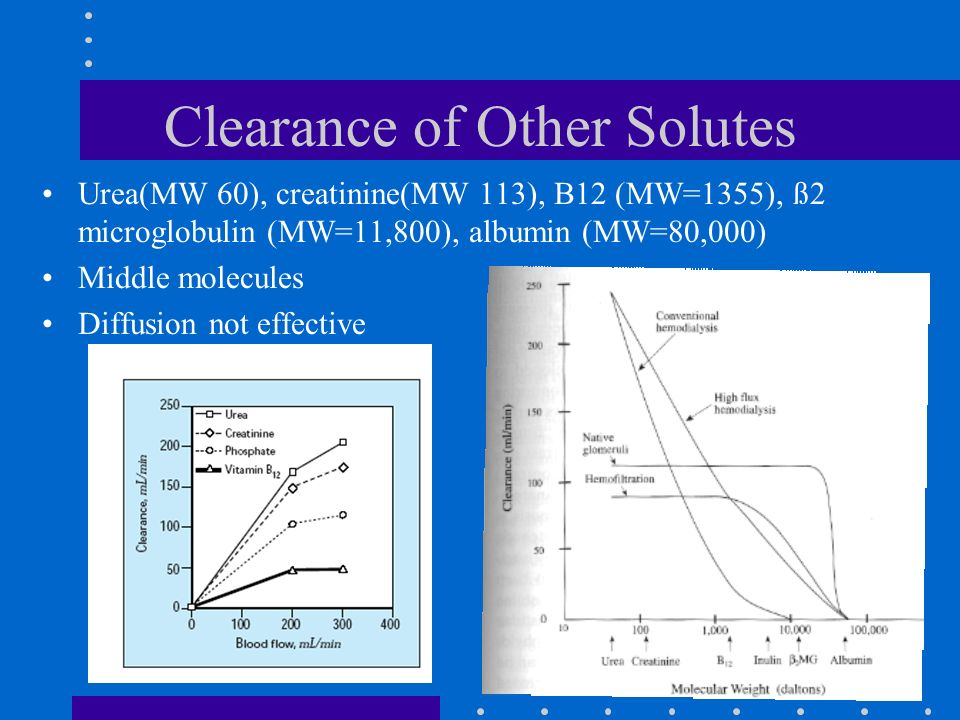 Clearance of Other Solutes