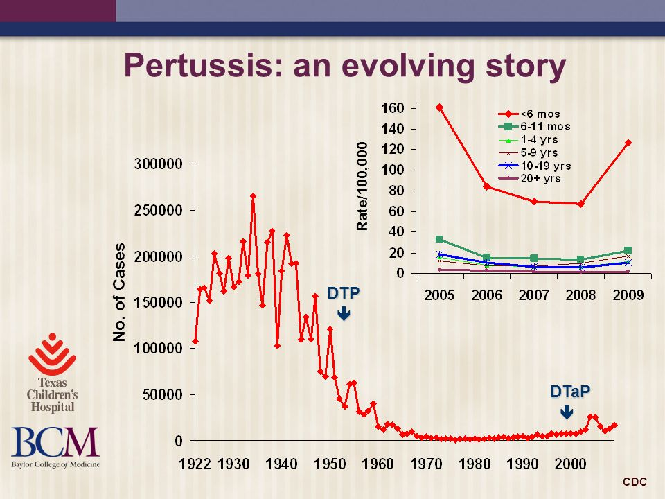 Pertussis: an evolving story
