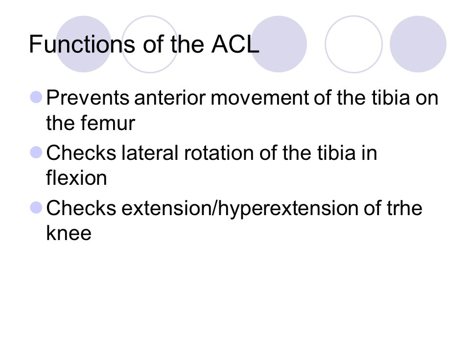 Functions of the ACL Prevents anterior movement of the tibia on the femur. Checks lateral rotation of the tibia in flexion.