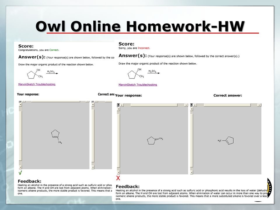 Owl Online Homework-HW