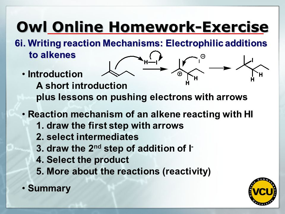 Owl Online Homework-Exercise