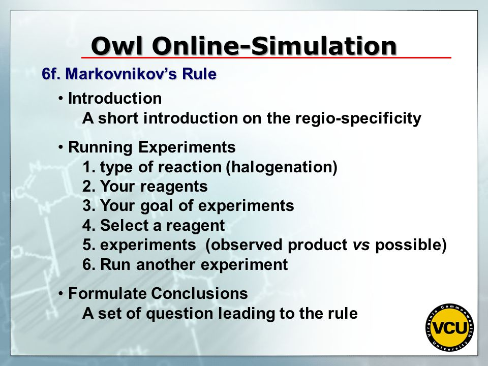 Owl Online-Simulation