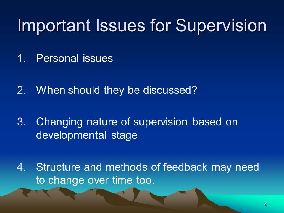 Important Issues for Supervision