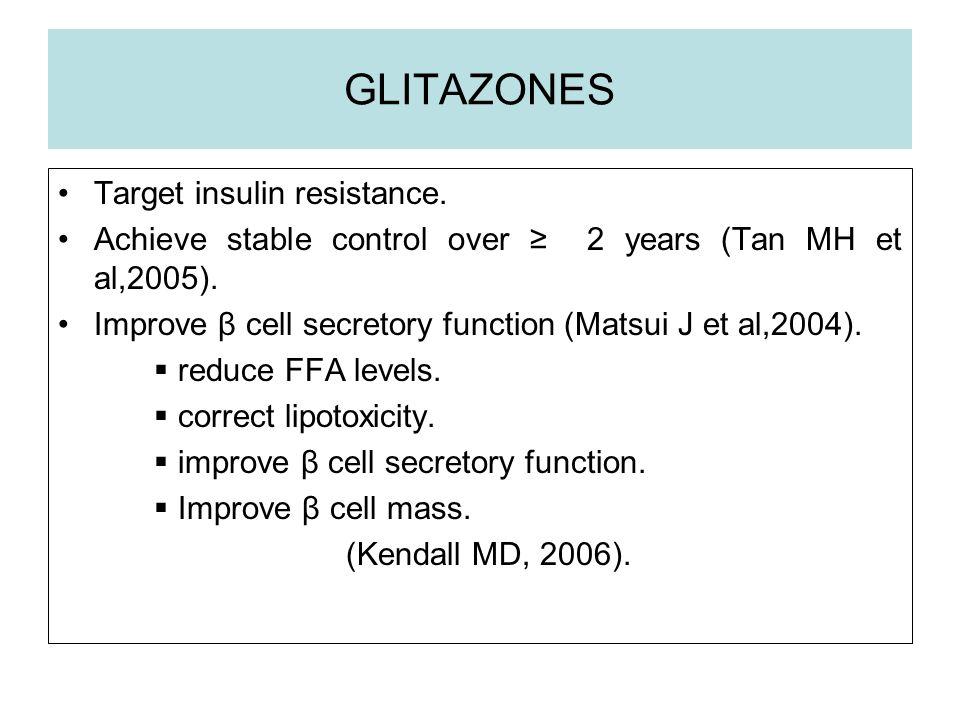 GLITAZONES Target insulin resistance.