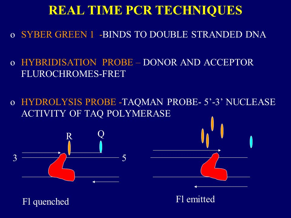 REAL TIME PCR TECHNIQUES
