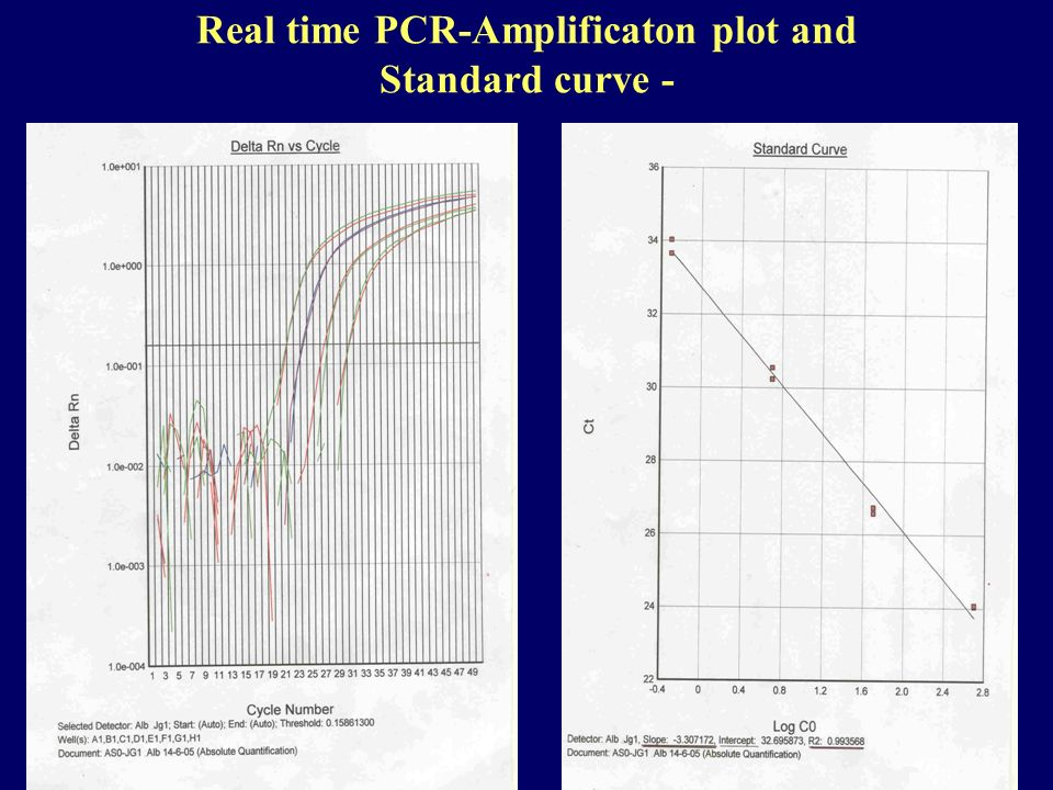 Real time PCR-Amplificaton plot and Standard curve -