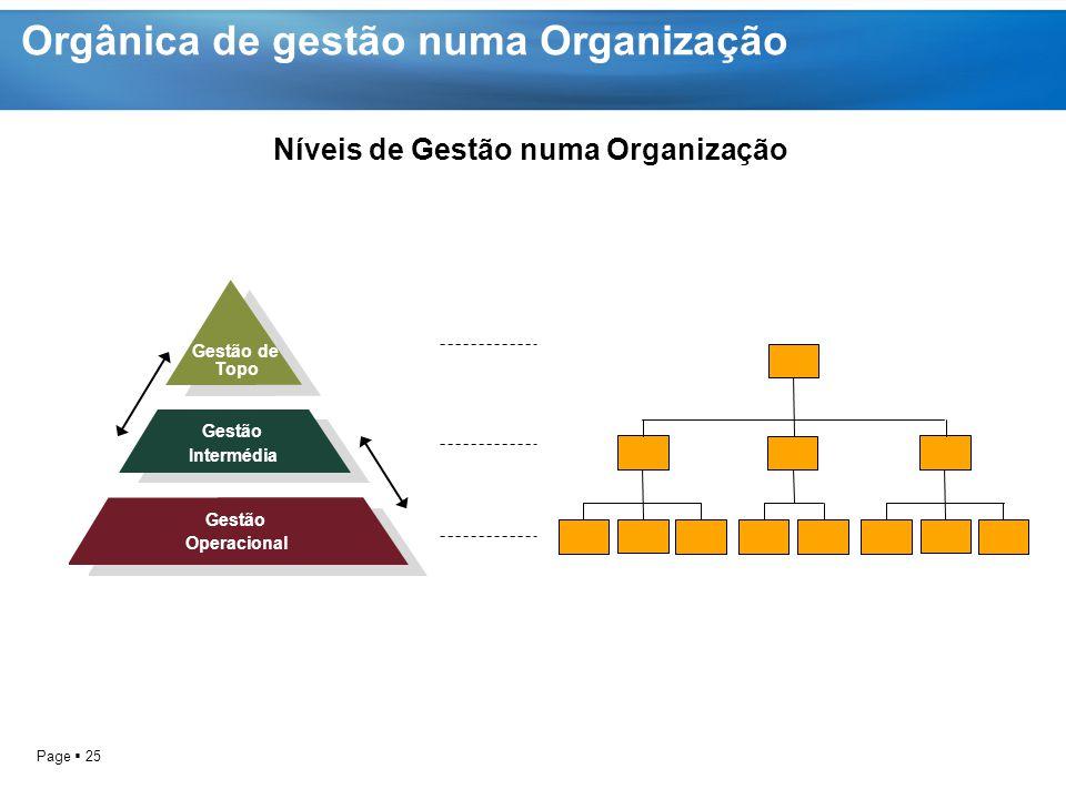 Orgânica de gestão numa Organização