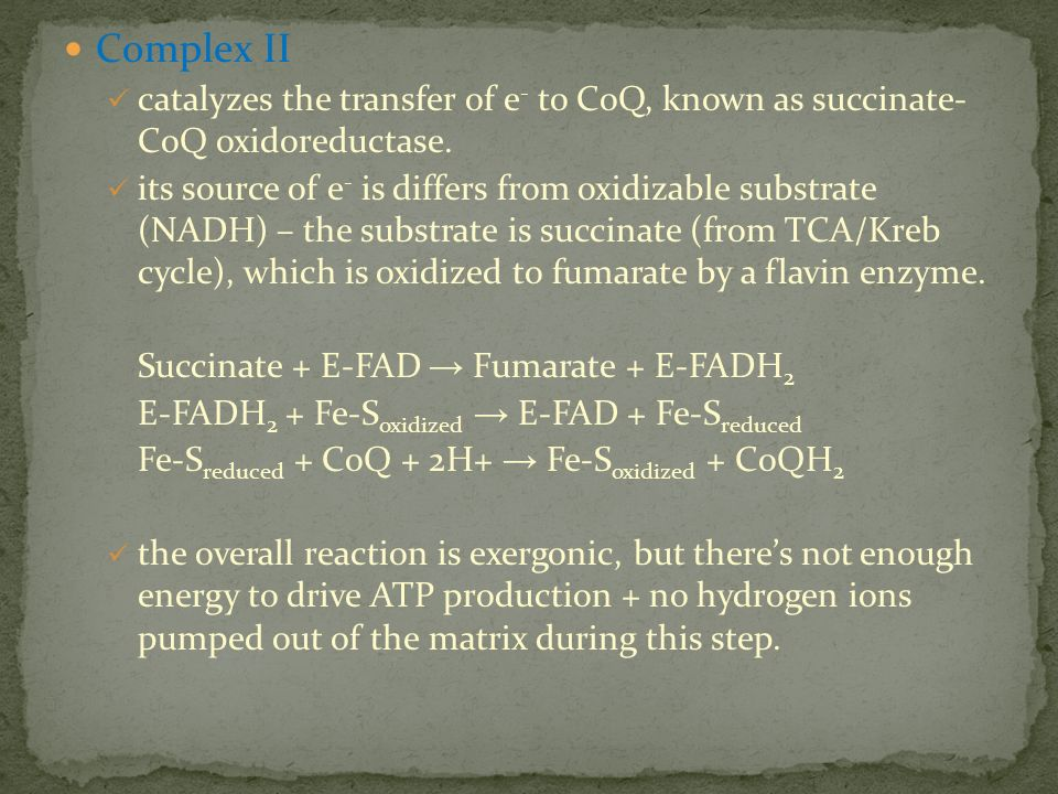 Complex II catalyzes the transfer of e- to CoQ, known as succinate- CoQ oxidoreductase.