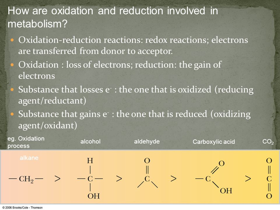 How are oxidation and reduction involved in metabolism