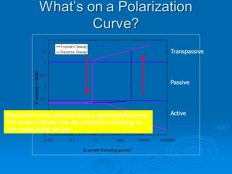 What's on a Polarization Curve
